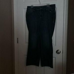 Lane Bryant distinctly boot-cut petite jeans